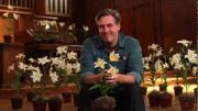 22 | Easter & Lilies -- Chuck Knows Church